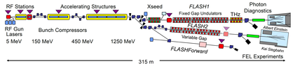 FLASH - Schematic layout of the facility.